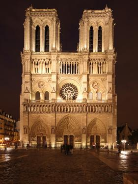 The Famous Cathedral of Notre Dame in Paris after the Rain, France by David Bank