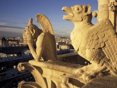 Gargoyles of the Notre Dame Cathedral, Paris, France by David Barnes