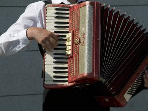Street Accordionist, Prague, Czech Republic by David Barnes