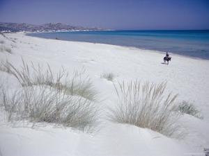 Raf Raf Beach, North Coast, Tunisia, North Africa, Africa by David Beatty