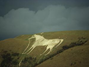 White Horse Near Westbury, Wiltshire, England, United Kingdom, Europe by David Beatty