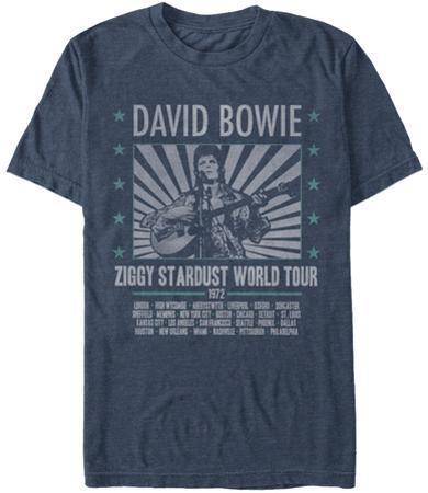 David Bowie- Ziggy World Tour '72 (Premium)