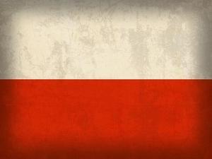 Poland by David Bowman