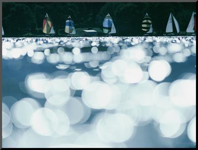 Boat Race on Lake Minnetonka by David Boyer