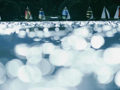 Boat Race on Lake Minnetonka