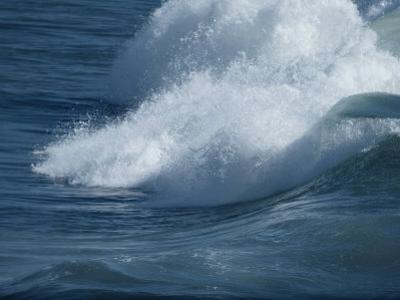 Surf by David Boyer