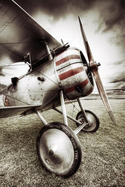 Nieuport 17 by David Bracher