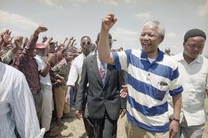 Nelson Mandela by David Brauchli
