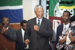 Nelson Mandela by David Brauchli