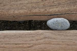 Groynes, abstract view of pebble stuck in weathered timber, West Runton, Norfolk by David Burton
