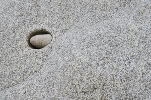 Pebble in hole of large rock, Sidmouth, Devon, England by David Burton