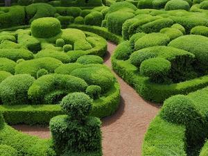Topiary Garden at Chateau de Marqueyssac by David Burton