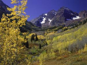 Valley with Autumn Foliage, Maroon Bells, CO by David Carriere