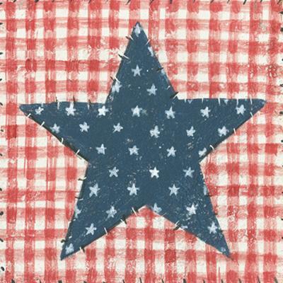 Americana Quilt II by David Carter Brown