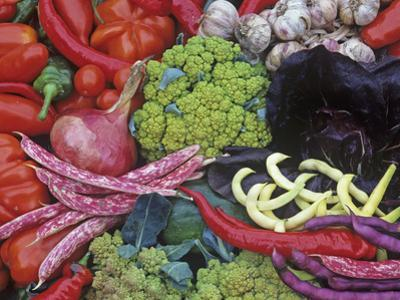 Colorful Italian Heirloom Vegetable and Fruit Harvest, Seed Savers Exchange by David Cavagnaro