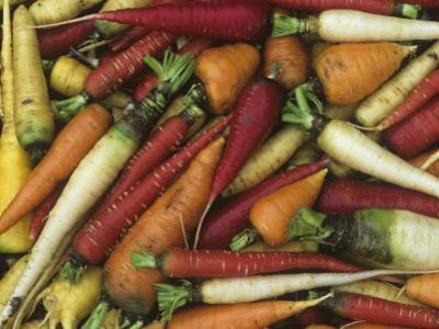 Genetic Variation and Diversity in Carrots, Daucus Carota by David Cavagnaro