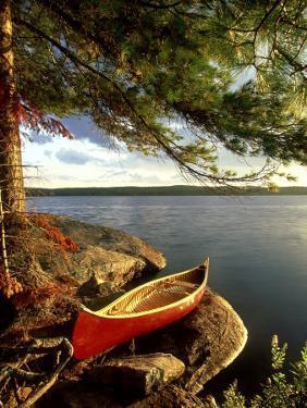 Cedar Canvas Canoe, Canada by David Cayless