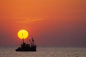Fishing Boat at Sunset by David Cayless