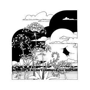 Plants in Field by David Chestnutt