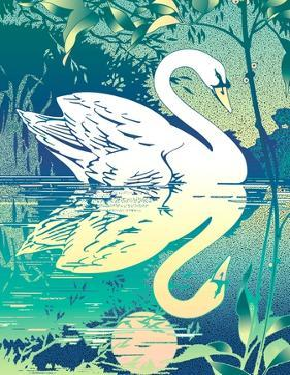 Swan Reflecting in Water by David Chestnutt