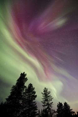 Aurora Borealis above Kiruna, Sweden by David Clapp