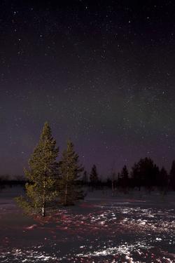 Snow Lit by Car Lights in Finland, Scandinavia by David Clapp