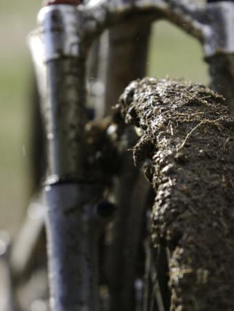 A Muddy Mountain Bike Tire, Mt. Bike by David D'angelo