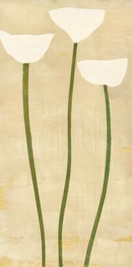 White Trio by David Dauncey