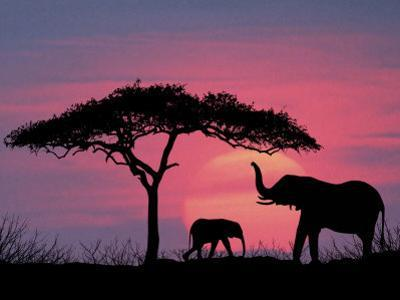 Silhouette of Elephants and Tree by David Davis