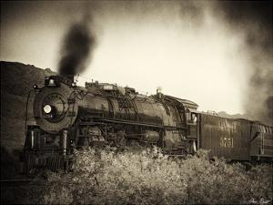 Train Arrival I by David Drost