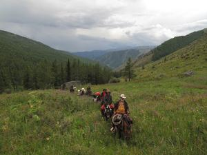 A Train of Pack Horses Trek Through Western Mongolia by David Edwards