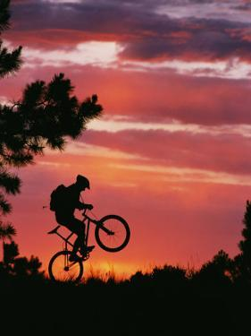 Silhouetted Biker Pulls a Wheelie at Twilight by David Edwards