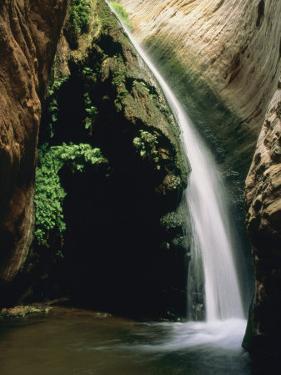 Stone Creek Waterfall, Grand Canyon, Arizona by David Edwards