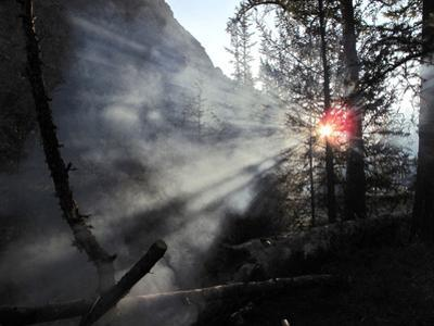 The Smoke from a Camp Fire Lingers in Western Mongolian Larch Forest