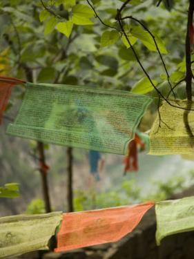 Colorful Buddhist Prayer Flags, Wushan, China by David Evans