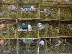 Crab Traps and Buoys Stacked on Chesapeake Bay Pier by David Evans