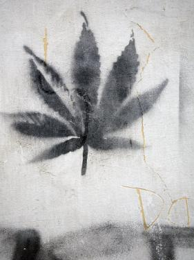 Graffiti of a Marijuana Leaf by David Evans