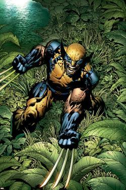 New Avengers No.5 Cover: Wolverine Crouching by David Finch