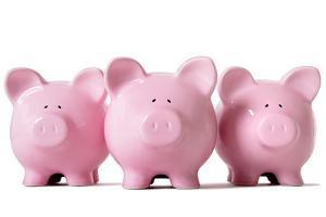 Row of Pink Piggy Banks by david franklin