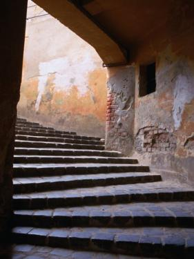 Stairs Leading to the Old Town, Sighisoara, Romania by David Greedy