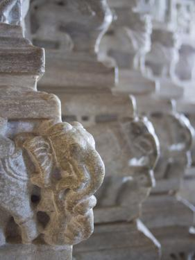 Carved Elephant Columns of Temple at Ranakpur, Rajasthan, India by David H. Wells