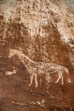 A Circa 2 Foot Wide Horse, Ute Indian, Petroglyph on a Cliff Above the San Juan River by David Hiser