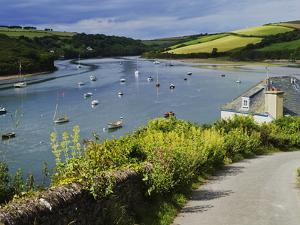 Estuary of the River Avon, Bantham, Bigbury on Sea, Devon, England, United Kingdom, Europe by David Hughes