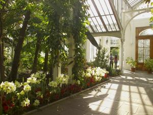Interior of the Temperate House, Kew Gardens, Unesco World Heritage Site, London, England by David Hughes
