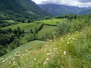 Valley of the River Berthe Near Accous, Bearn, Pyrenees, Aquitaine, France, Europe by David Hughes