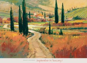 September in Tuscany I by David Jackson