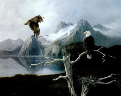 Nesting Eagle by David Jean