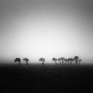Arcane by David Keochkerian