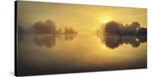 Golden Morning by David Keochkerian