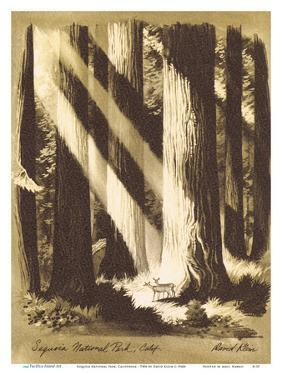 Sequoia National Park, California - Giant Sequoia Trees - TWA (Trans World Airlines) Menu Cover by David Klein